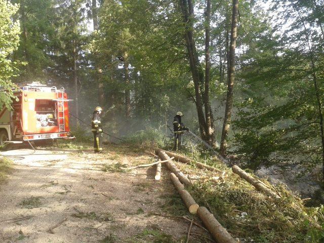 INTERVENCIJA: Gozdni požar Lajše 23.7.2016 (16)