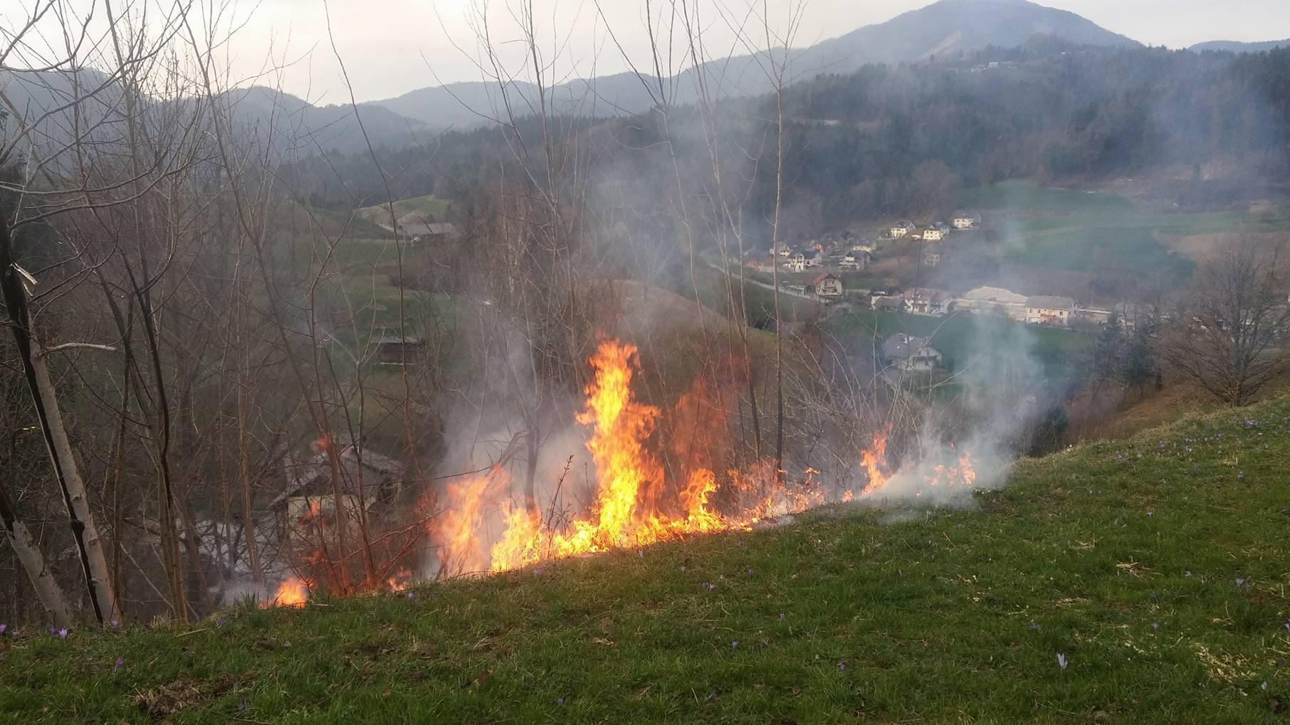 INTERVENCIJA: Požar v naravi – Delnice 11.4.2017 (9)