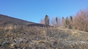 INTERVENCIJA: Požar v naravi – Podjelovo Brdo 12.12.2016 (26)