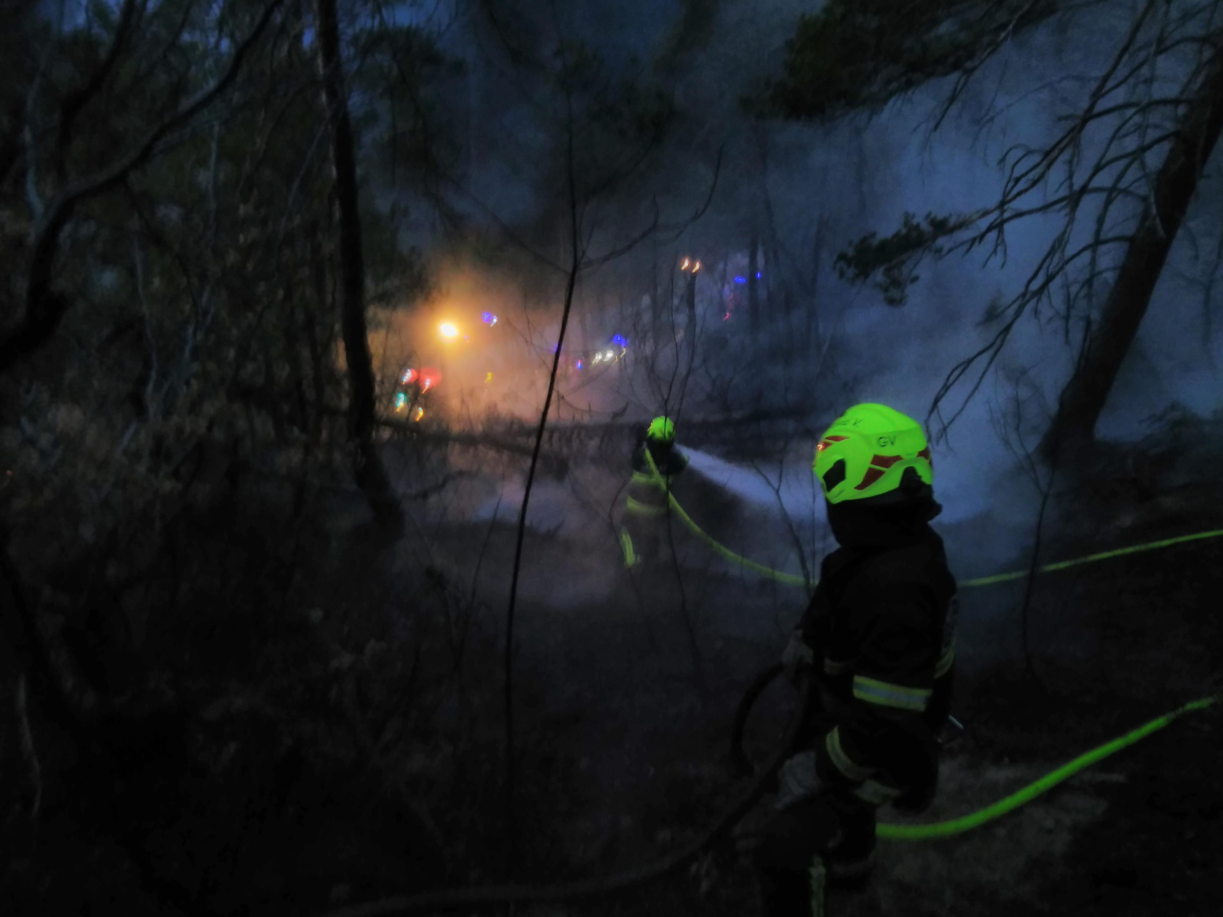 INTERVENCIJA: Gozdni požar Bačne 19.3.2017 (8)